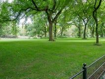 中央公园视图在曼哈顿 免版税库存照片