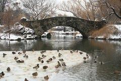 中央公园雪冬天 免版税库存照片