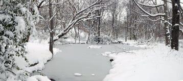 中央公园雪风暴 免版税库存图片