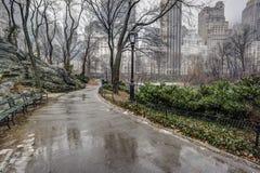 中央公园,在雨风暴以后的纽约 免版税库存照片