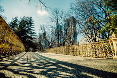 中央公园,曼哈顿,纽约 免版税库存照片