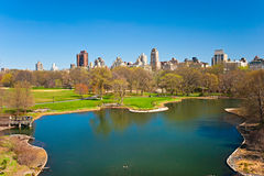 中央公园,纽约。 库存图片
