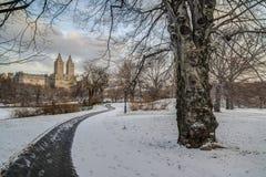 中央公园,纽约冬天 免版税库存照片