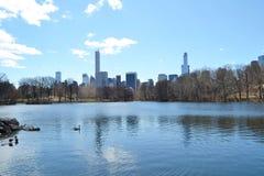 中央公园,纽约,美国 库存图片