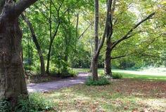 中央公园-足迹2 免版税库存照片