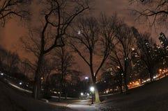 中央公园 免版税图库摄影