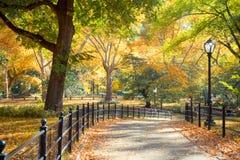 中央公园NY 库存照片