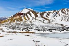 中央和红色火山口在东格里罗国家公园,新的Zeala 图库摄影