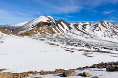 中央和红色火山口在东格里罗国家公园,新的Zeala 库存图片
