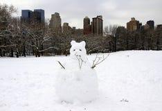 中央新的公园雪约克 免版税图库摄影