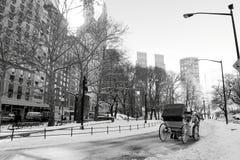 中央曼哈顿公园雪冬天 免版税库存图片
