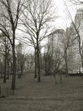 中央曼哈顿公园 免版税库存图片