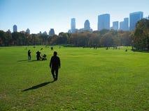 中央曼哈顿新的公园约克 库存图片