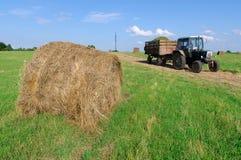 中央横向农村俄国俄语村庄 免版税库存图片
