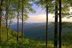中央巴尔干山,老山,保加利亚 免版税库存图片