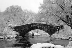 中央nyc公园雪风暴 免版税库存照片