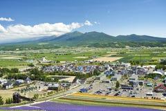 中富良野町在夏天 免版税图库摄影