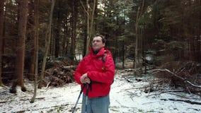中年人徒步旅行者在木头丢失了 影视素材