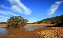中心区域南部非洲的干旱台地高原 库存照片