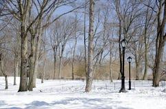 中心城市新的公园约克 库存图片