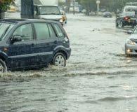 2011中心城市洪水法兰克福德国1月 免版税库存图片