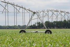 中心枢轴灌溉井轮子和支持st 库存图片
