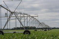 中心枢轴灌溉很好被节略的末端 免版税库存照片