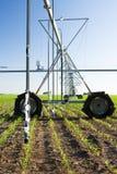 中心灌溉枢轴系统 免版税库存图片