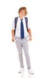 中断了青少年的男孩 免版税图库摄影