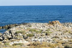 中断在一个石海滩的通知,形成浪花 挥动并且飞溅在海滩 失败在岩石上挥动 图库摄影