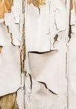 中断象查找的热绘削皮s舒展 免版税库存图片