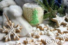 中看不中用的物品蓝色圣诞节构成玻璃 杯子用热巧克力和姜曲奇饼 库存图片