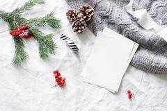 中看不中用的物品蓝色圣诞节构成玻璃 空白的贺卡,愿望大模型场面 圣诞树分支,红色花楸浆果,杉木 库存照片