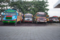 中美洲鸡公共汽车  免版税图库摄影