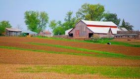 中西部农场 免版税图库摄影