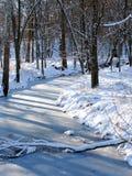 中西部冬天风景 免版税图库摄影