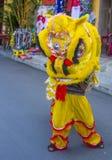 中间秋天festiaval在会安市 免版税图库摄影