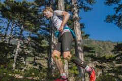 中年公赛跑者通过杉木森林运行 免版税库存照片