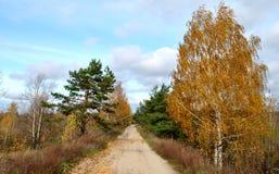 中间秋天, 10月 库存图片