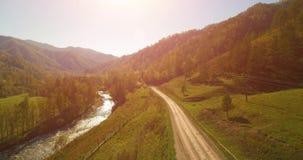 中间航空小队在新鲜的山河和草甸在晴朗的夏天早晨 下面农村土路 母牛和汽车 股票视频