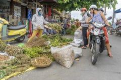 中间年节日,会安市,越南 库存照片