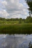 中间车道池塘的森林有蓝天的和水晶浇灌 库存图片