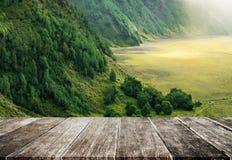 丰富地山小山的热带雨林早晨环境美化,与木地板 库存图片