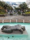 丰沙尔/马德拉岛 库存照片