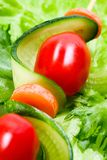 串蔬菜 免版税库存照片