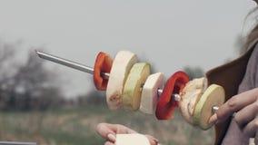 串起在串的女性手菜在室外的野餐的烤肉 股票录像