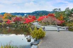 丸山晃演(圆山公园)在秋天,在京都 免版税库存照片