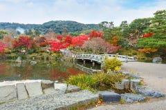 丸山晃演(圆山公园)在秋天,在京都 免版税库存图片