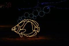 丹佛鱼点燃动物园 库存照片