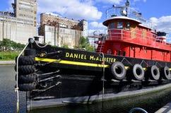 丹尼尔McAllister 免版税库存图片
